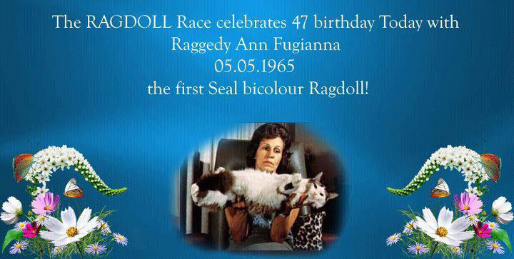 Raggedy Ann Fugianna