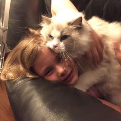 bluqueen-gatto